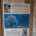 One of the information signs describing the history of the Joyce Kilmer Memorial Forest.- Joyce Kilmer Memorial Forest Loop Trail