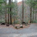 Some sites are close together on the lower section of the campground.- Horse Cove Campground