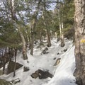The trail becomes steep approaching the summit.- Castle Rock Snowshoe