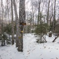 Returning to the trail loop.- Castle Rock Snowshoe