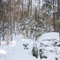 Some large boulders line the path to Coney Mountain.- Coney Mountain Snowshoe