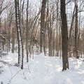 The western side of Coney Mountain.- Coney Mountain Snowshoe