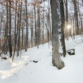 Wrapping around the northern face of Coney Mountain.- Coney Mountain Snowshoe