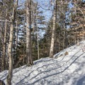 Approaching the summit of Coney Mountain.- Coney Mountain Snowshoe