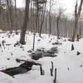 A bridge over stream outflow.- Poke-O-Moonshine Snowshoe