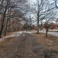 The trail begins near the zoo parking lot.- Genesee Riverway Trail at Seneca Park