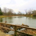 View of the duck pond on Camp Creek Trail.- Camp Creek Trail