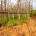 A pipe over the trail.- Schoen Creek Trail