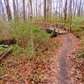 A bridge on Schoen Creek Trail.- Schoen Creek Trail