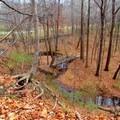 Overlooking a bridge on Schoen Creek Trail.- Schoen Creek Trail