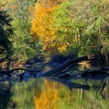 Autumn colors on the Chattahoochee River.- Abotts Bridge Trail