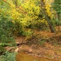 Small creek that runs into the Chattahoochee River.- Abotts Bridge Trail