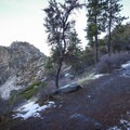 There are a couple trail forks, but the path to Cave Rock is pretty straightforward.- Cave Rock Trail