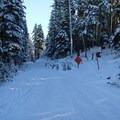 The beginning of the trail.- Bennett Pass Sno Park