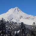 The east side of Mount Hood from Bennett Pass Sno Park.- Bennett Pass Sno Park