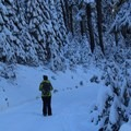 Snowy trails at Bennett Pass Sno Park.- Bennett Pass Sno Park