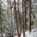 Hiking on the Stewardship Trail around Round Lake. - Stewardship Trail