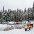 A great spot to watch for wildlife along the Stewardship Trail. - Stewardship Trail