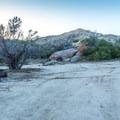 A typical campsite at Culp Valley.- Culp Valley Primitive Campground
