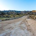 The main road at Culp Valley Primitive Campground.- Culp Valley Primitive Campground