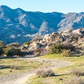 The view from Culp Valley Trail.- Culp Valley Loop