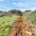 The trail is quite steep in places.- Copper Creek Trail via Whiptail Trail