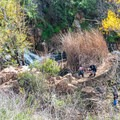 Hikers relaxing at Copper Creek Falls.- Copper Creek Trail via Whiptail Trail
