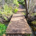 The trail crosses over Copper Creek on several occassions.- Copper Creek Trail via Whiptail Trail