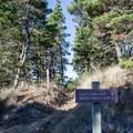 Sign along Lily Lake Trail. - Lily Lake Trail