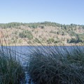 A glimpse of Lily Lake from the trail. - Lily Lake Trail