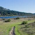 Lily Lake trail along the Oregon Coast. - Lily Lake Trail