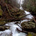 Bull Cove Falls shoots down through the rock formations.- Beech Creek Loop Trail to Big Scaly Mountain