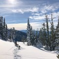 Scoping out the terrain to find the best snow to ski down.- Brundage Mountain (Sargeant's Peak)