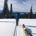 Fresh tracks are still available even a week after the last snow if you search around a little bit.- Brundage Mountain (Sargeant's Peak)