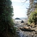 Hiking up to the waterfall.- Sombrio Beach