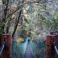 A hiker backpacking over suspension bridge to west Sombrio. The Juan de Fuca Trail passes Sombrio.- Sombrio Beach