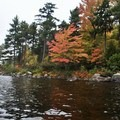 Although you won't be swimming, the Adirondack's colorful display of changing leaves makes October one of the best times to visit Little Tupper Lake.- Little Tupper Lake Canoe Camp