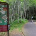 "Entering the L.L. ""Stub"" Stewart State Park via the Banks-Vernonia Trail.- 5 Family-Friendly Trails Near Portland"