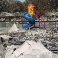 Some areas remained curiously untouched. Photo published under CC license 2.0.- 2017's Devastating California Wildfires: How You Can Help