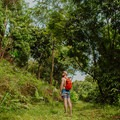 Hiking through the jungle.- An Adventure Guide to Koh Tao: Exploring a Thai Paradise