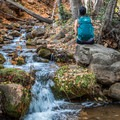Fall colors along one of Arizona's many creeks.- Gear Review: Gregory Sula 28 Daypack