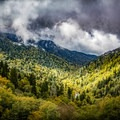 The golds and yellows of autumn begin to spread throughout the higher elevations of the Smokies first. - Stunning Fall Adventures in the Central Appalachians