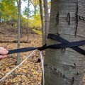 Threading the Muletape through the tree strap loop.- Gear review: Antigravitygear MULETAPE Suspension Straps