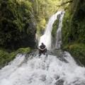 - A hidden 'family' of waterfalls in Opal Creek Wilderness
