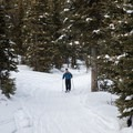 Heading back to the trailhead along the forest road.- Backcountry Skiing Phillips Canyon with the Casio Pro Trek