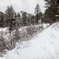 Elk tracks along the Mahogany Creek Trail.- Cross-country Skiing the Mahogany Ridge Trail with the Casio Pro Trek