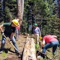 Making some room for the saw to go through.- The Bold Betties: Idaho Trails Association Women's-Only Trail Maintenance