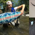 84 East Pendleton Inspired Salmon or Bull Skull Mount.- 10 Gift Ideas for the Outdoor Dad