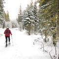 Linda Gillard on the trail.- Paulina Creek + Falls Loop Trail