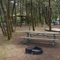 South Beach State Park's hiker and biker camp.- South Beach State Park Campground
